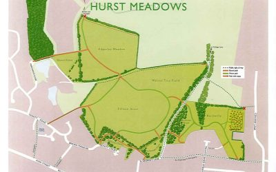 Hurst Meadows – upcoming works
